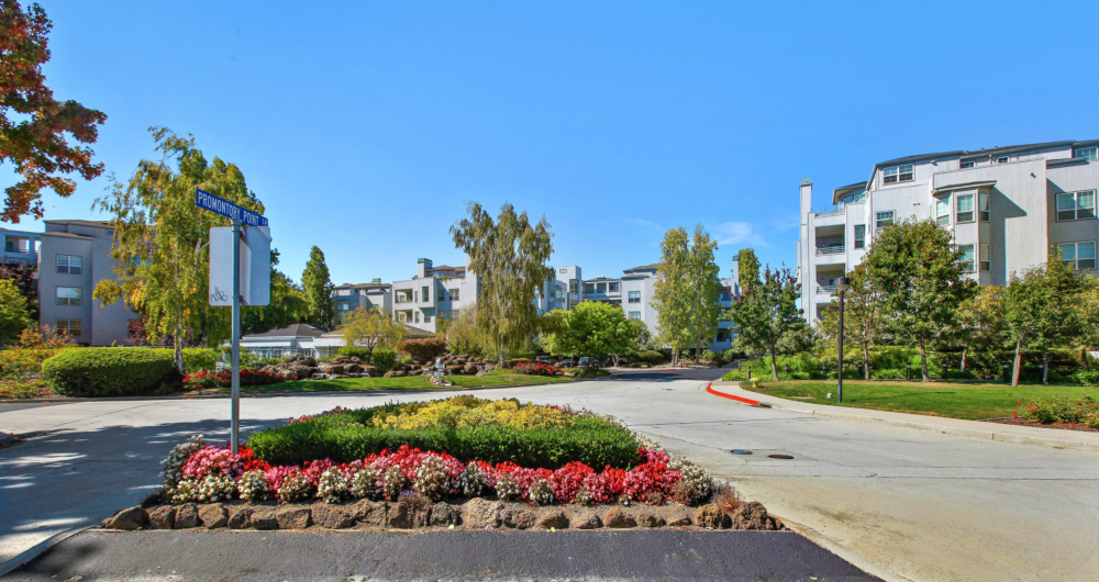 Waterfront Luxury at Foster City, Promontory Point